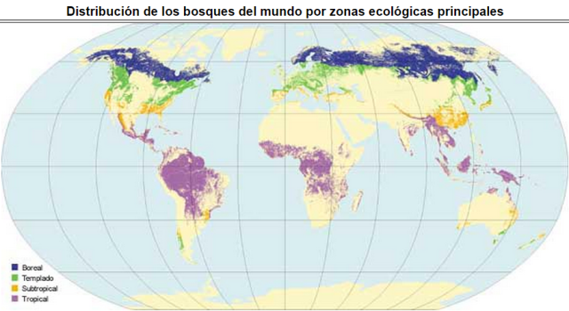 Extret: http://www.fao.org/ [29/09/2014]